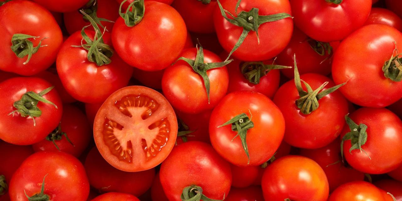tomato produce diet walla walla dentist dentist in walla walla female dentist
