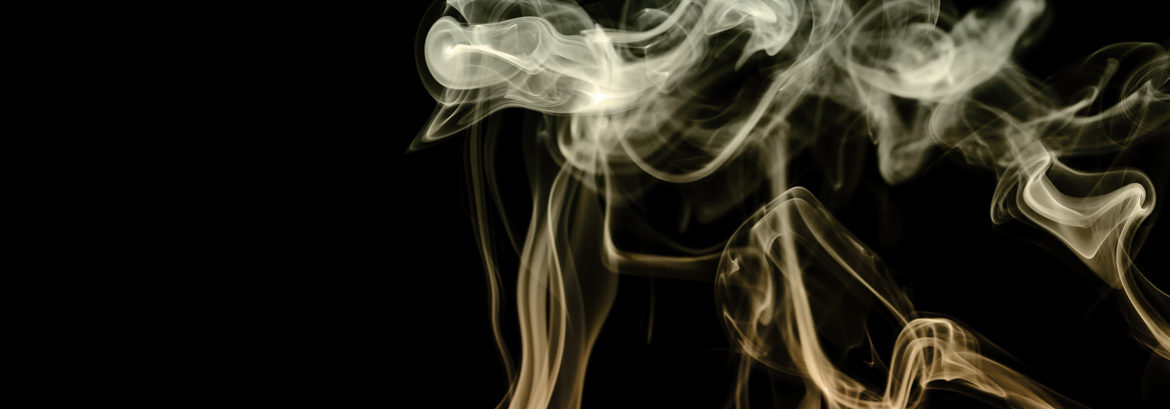 smoke for south waterfront dental of dimensions 1170 wide by 409 high